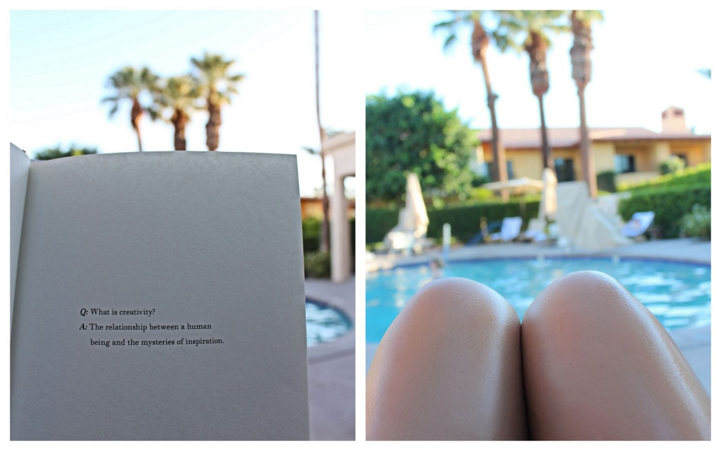Palm Springs Travel Guide1